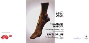 Нещата от живота, изложба на проф. Георги Чапкънов - Чапа, 23.07.-06.08.